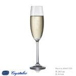 Maxima Champagne 220 ml